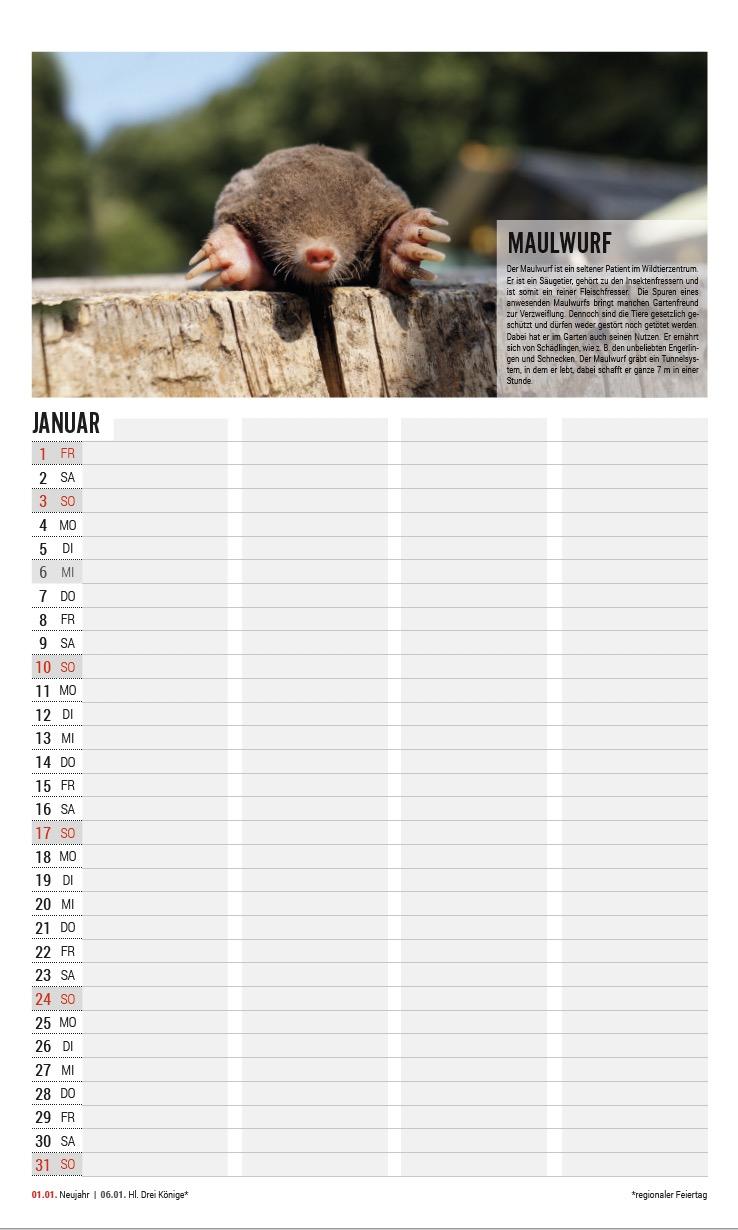 Familienkalender 2021